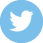 Icon Twitter | Print Master